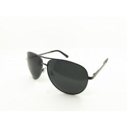 POLAR EAGLE polarized 0358/9 сталь/черный