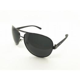 POLAR EAGLE polarized 0370 сталь/черный