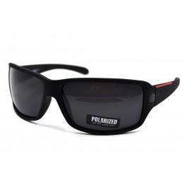 POLAR EAGLE polarized 02281 Матовый черный