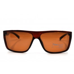 POLAR EAGLE polarized 02011 коричневый