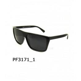 PGM 3171 C1