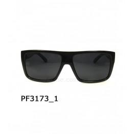 PGM 3173 C1