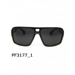 PGM 3177 C1